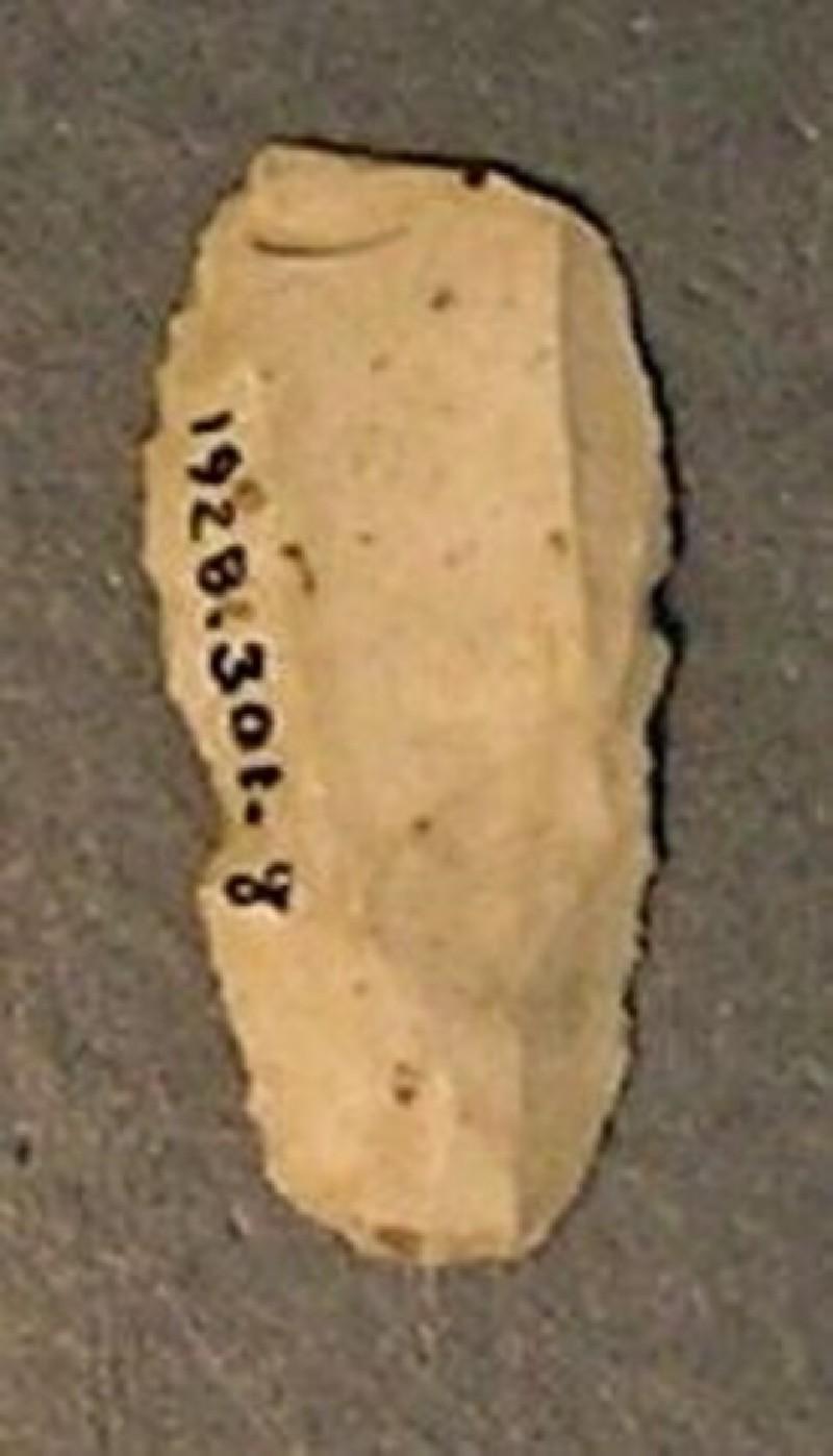 (AN1928.301.g, record shot)