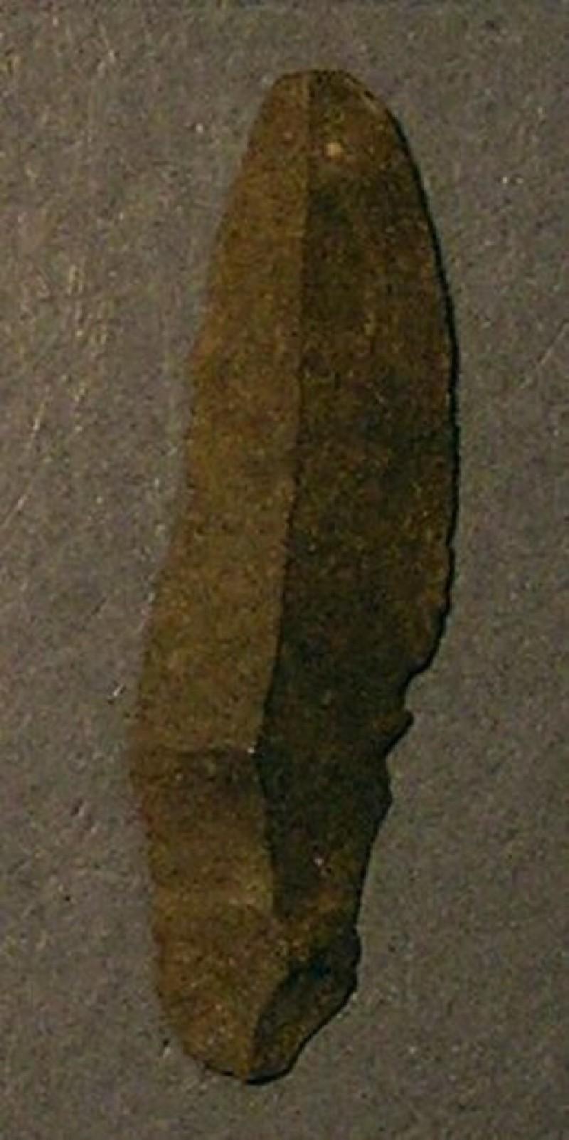 (AN1928.298.e, record shot)