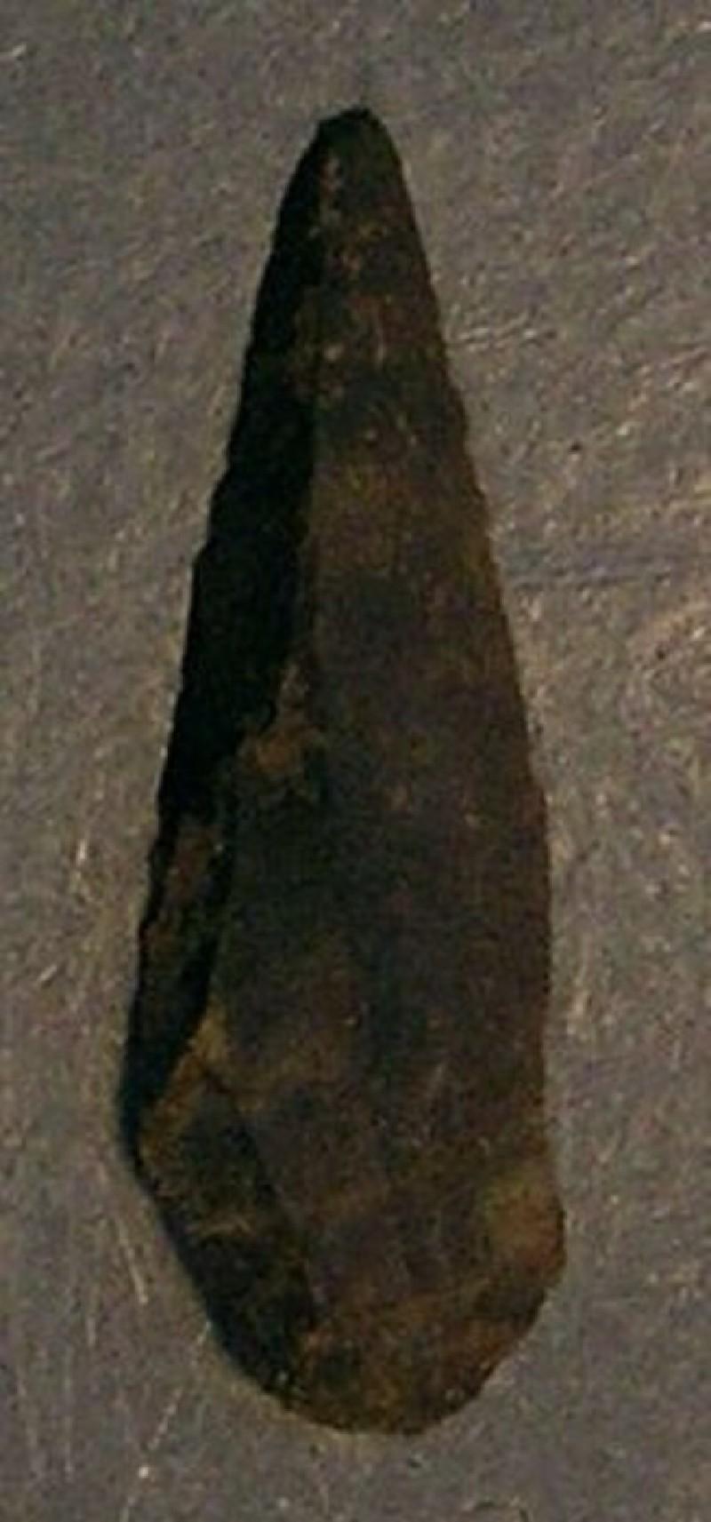 (AN1928.297.m, record shot)