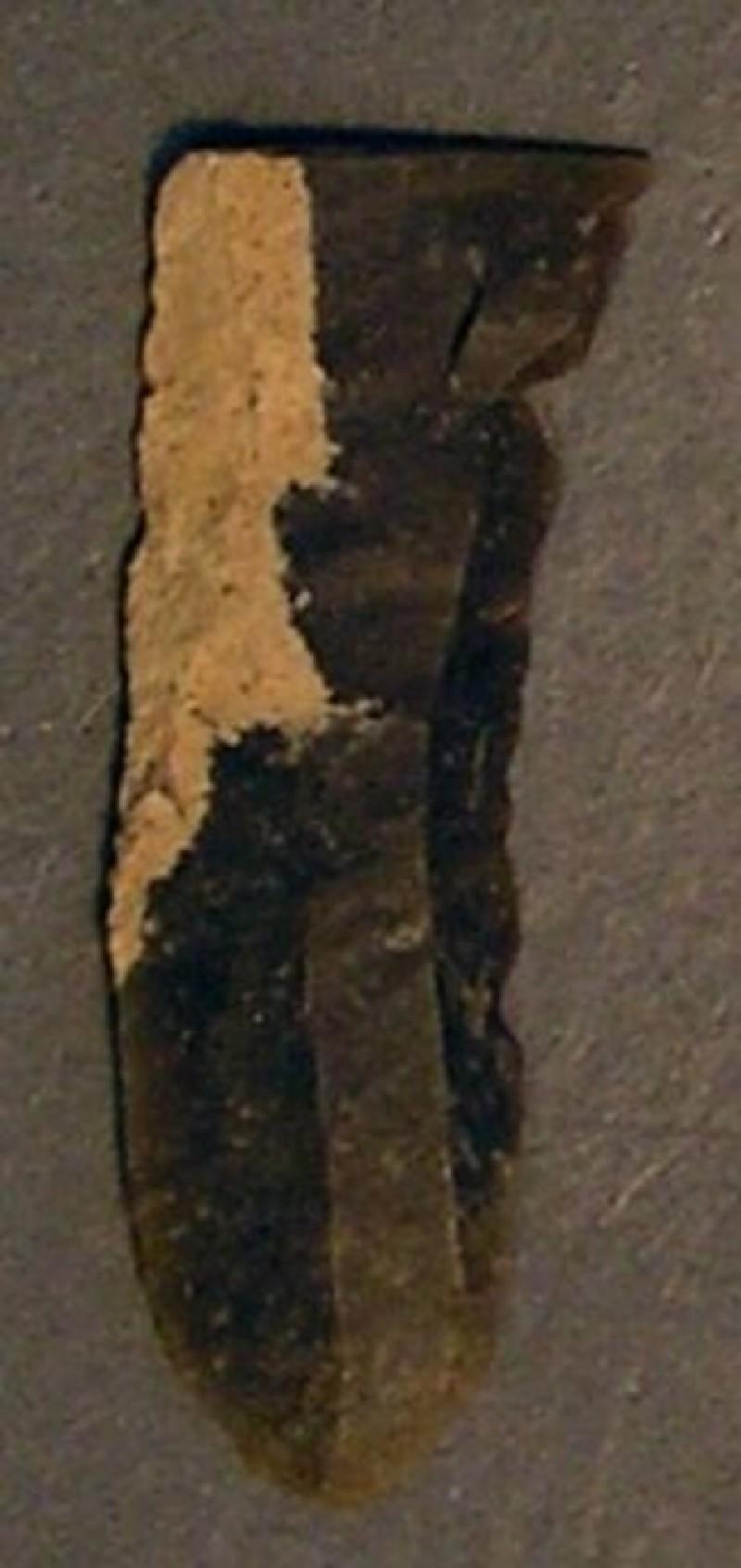 (AN1928.285.g, record shot)
