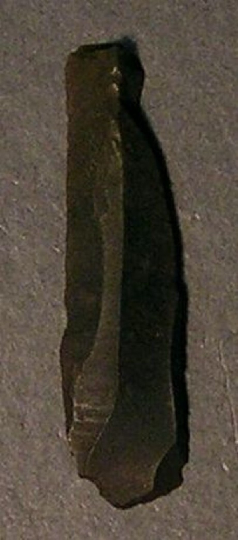 (AN1958.560.c, record shot)