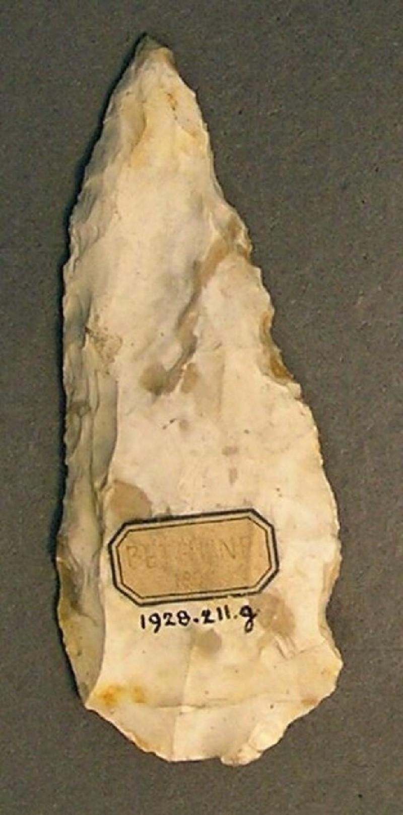 (AN1928.211.g, record shot)