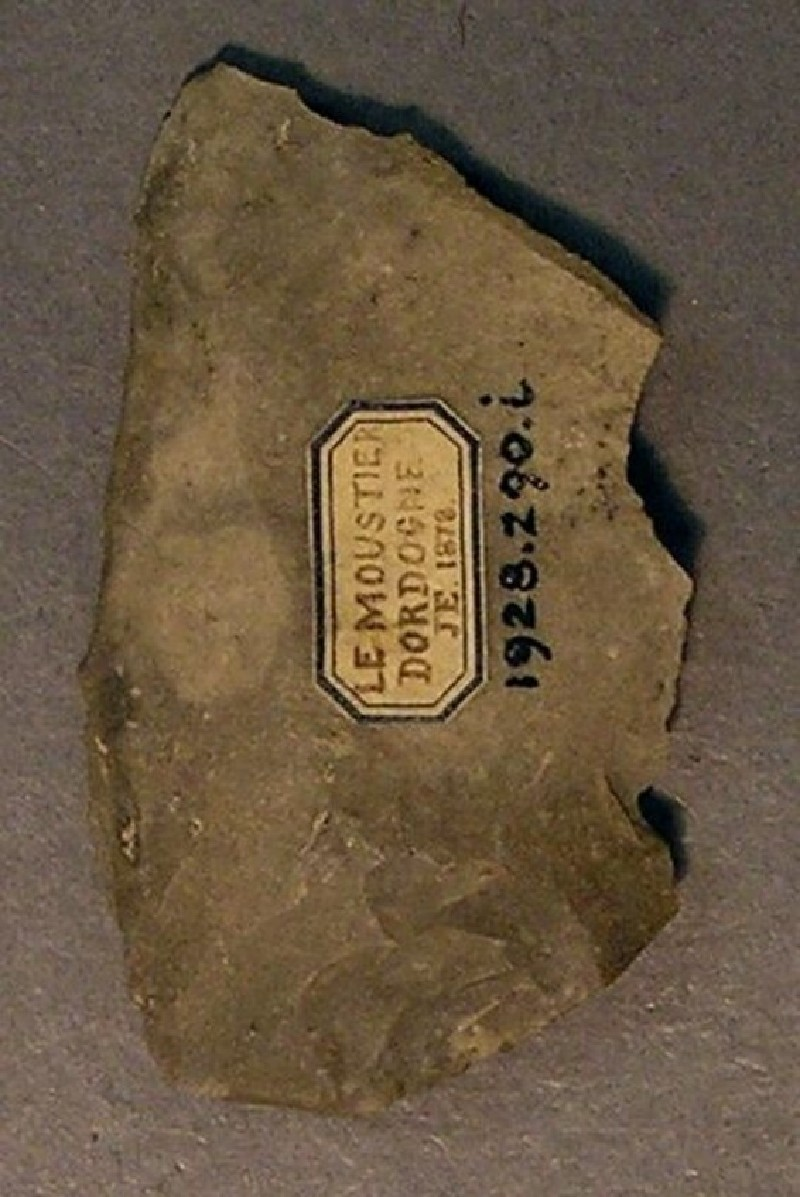 (AN1928.290.i, record shot)