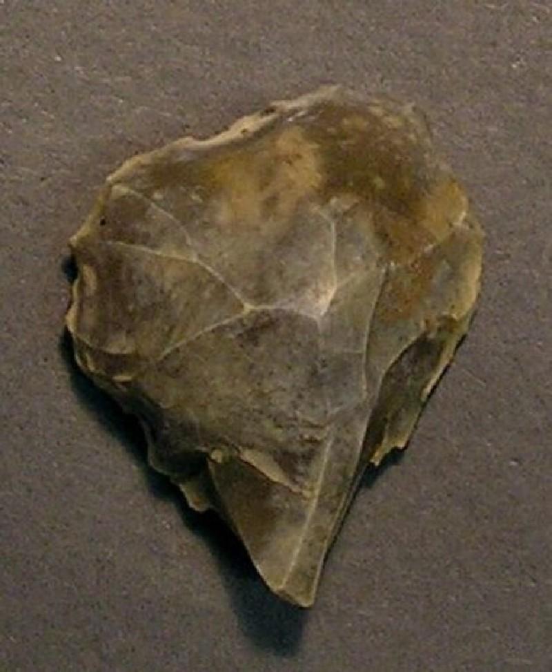 Scraper (AN1928.289.h, record shot)