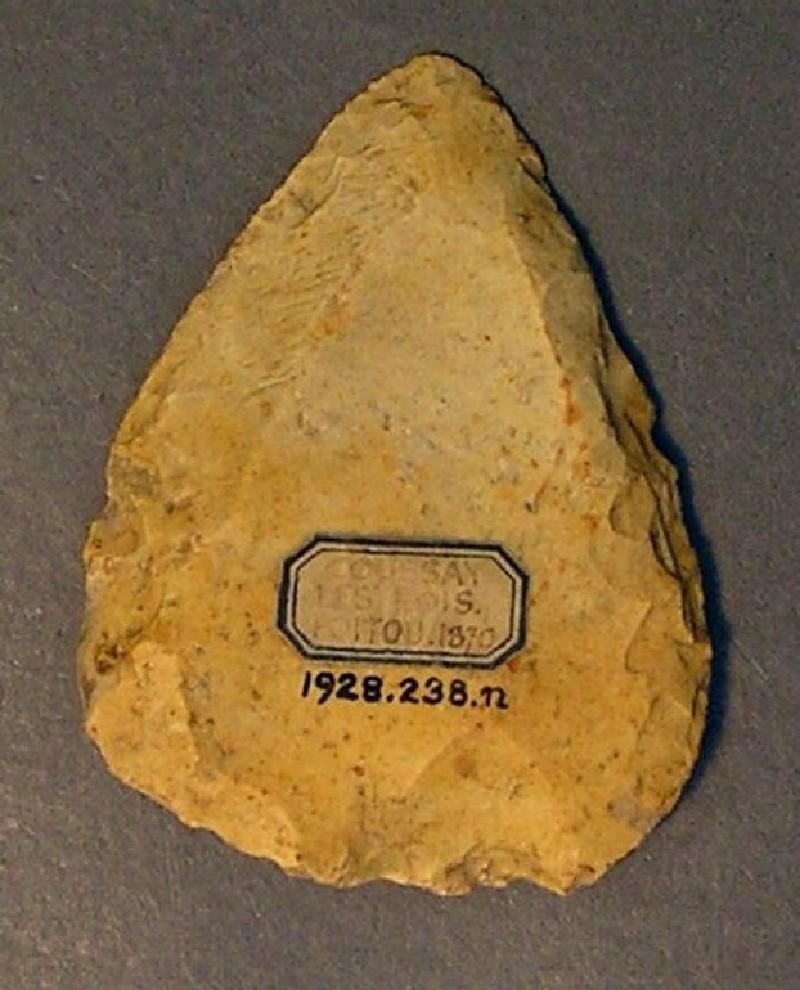 (AN1928.238.n, record shot)