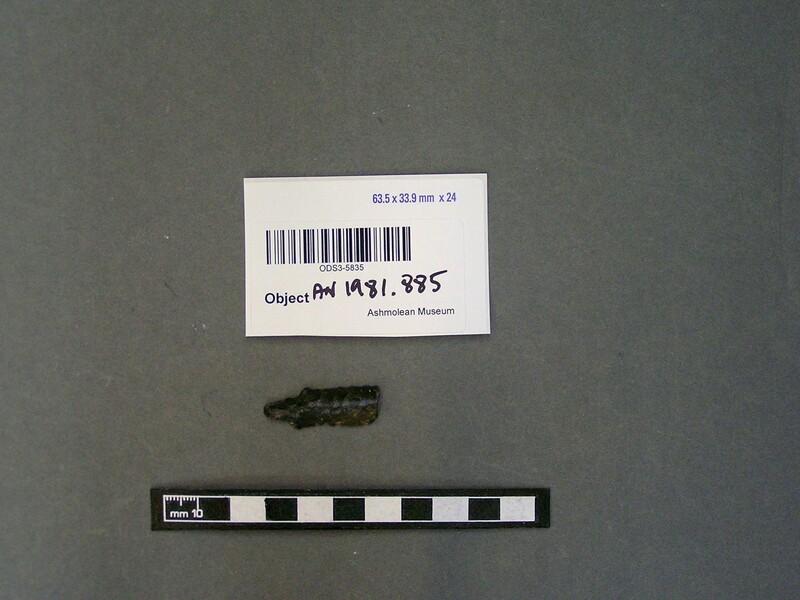 (AN1981.885, record shot)