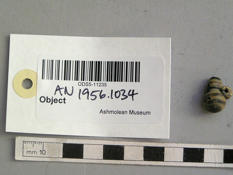 (AN1956.1034, record shot)