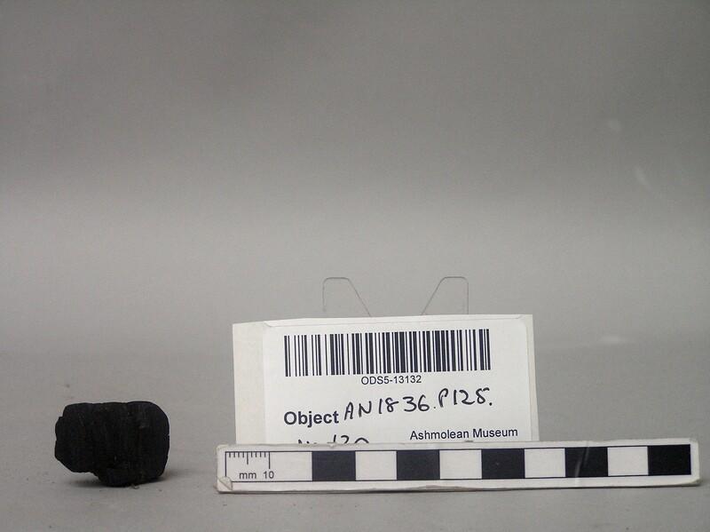(AN1836.p125.120, record shot)
