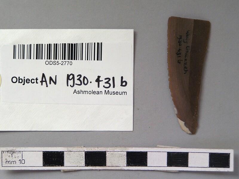 (AN1930.431.b, record shot)