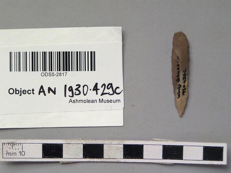 (AN1930.429.c, record shot)