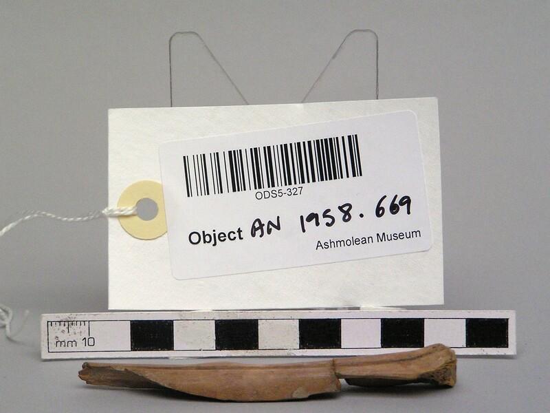 (AN1958.669, record shot)