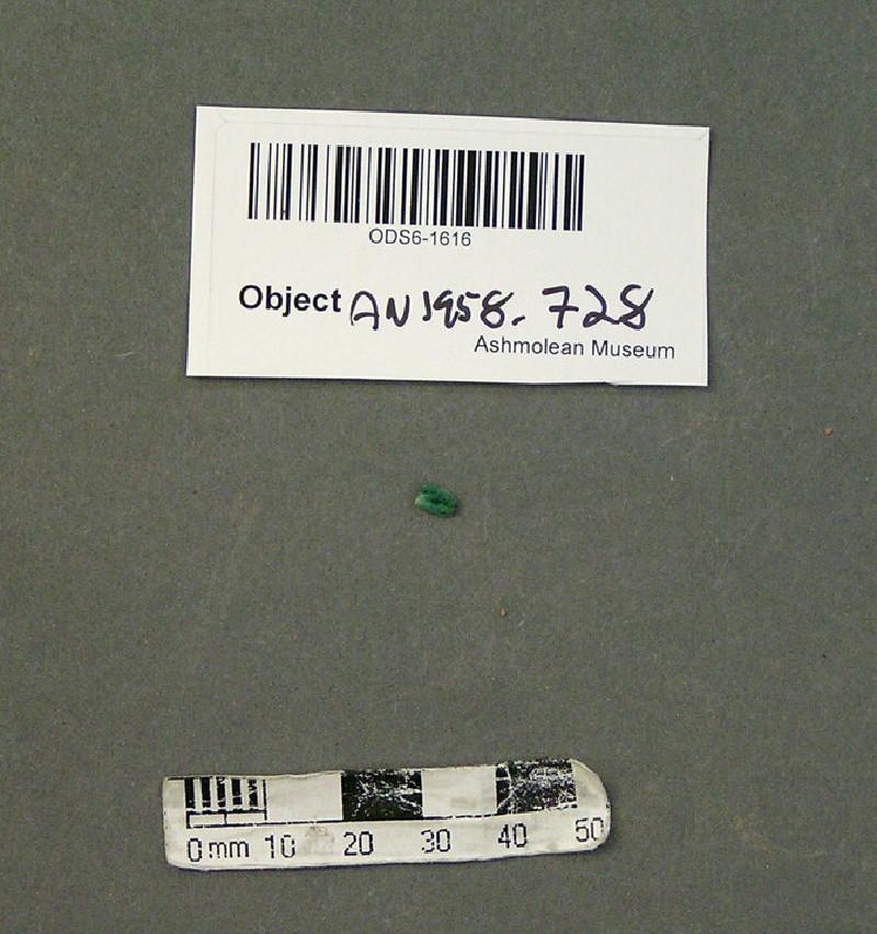 (AN1958.728, record shot)