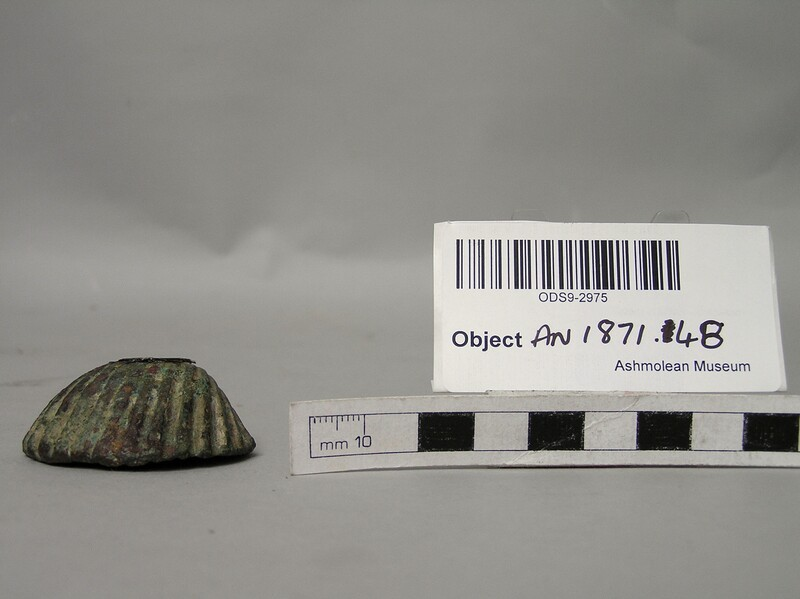 Palette in the form of a scallop shell
