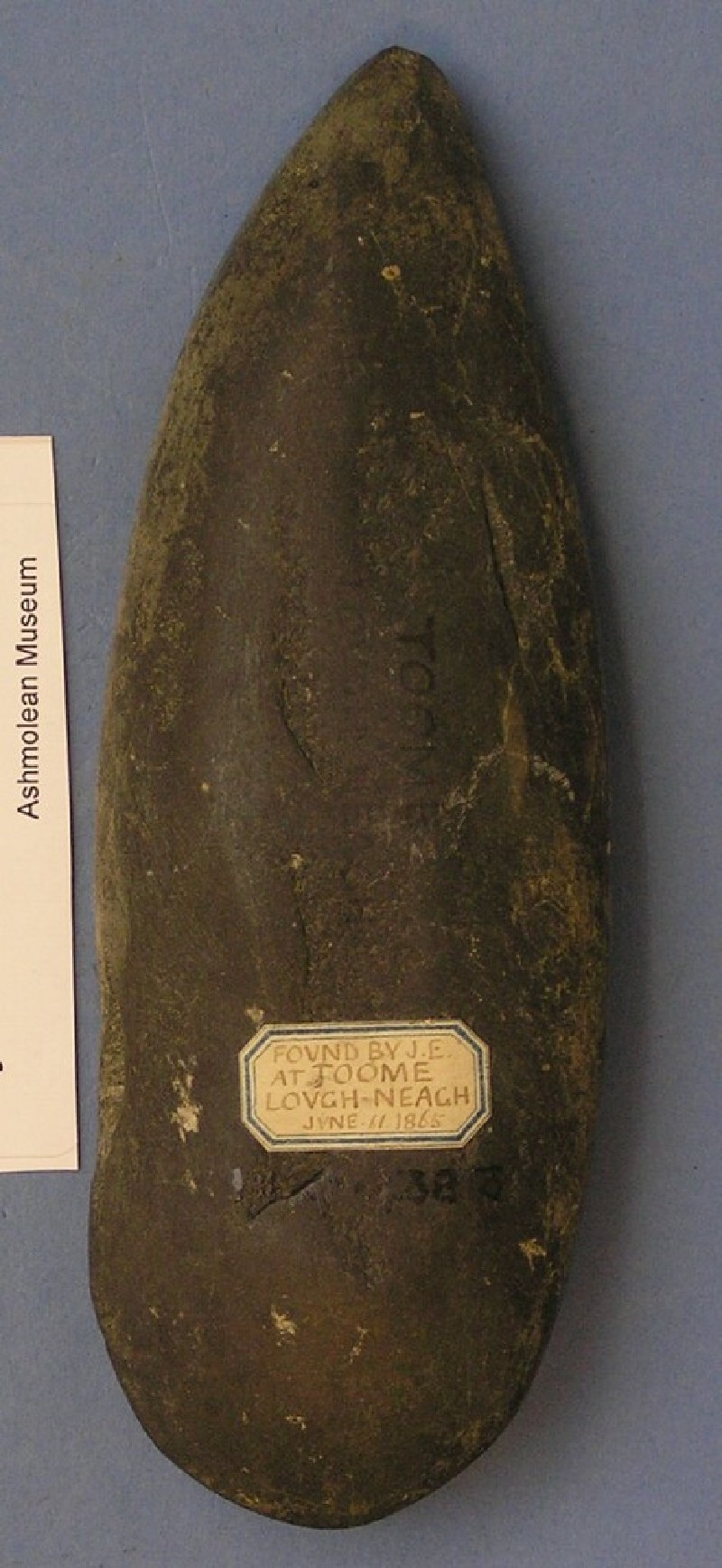 Polished stone axe (AN1927.4383, record shot)