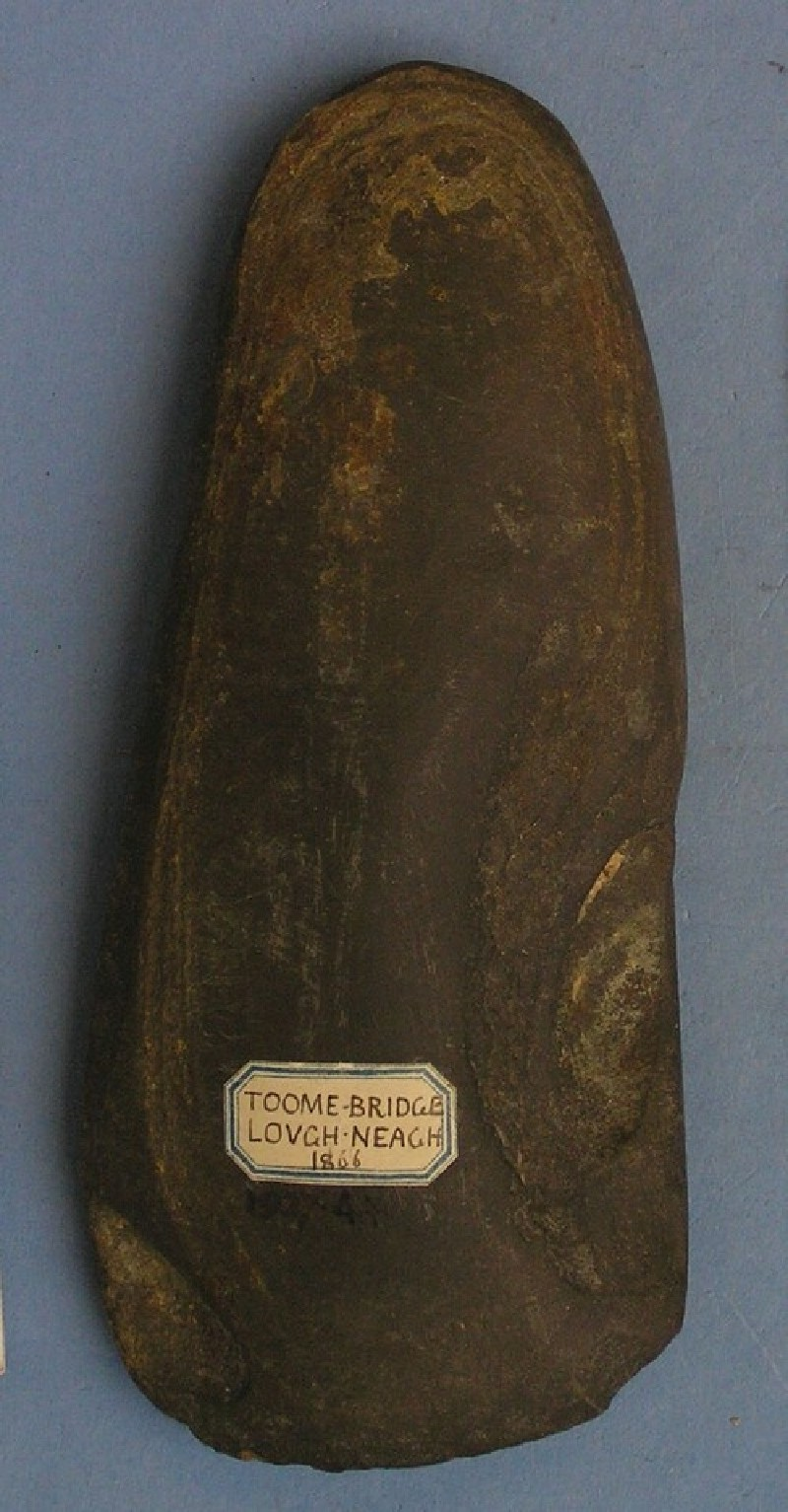 Polished stone axe (AN1927.4405, record shot)