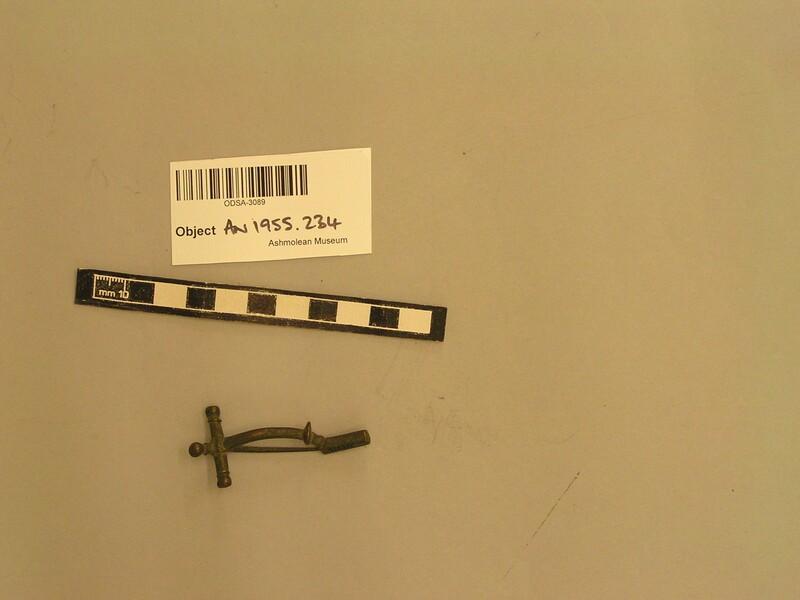 Fibula (AN1955.234, record shot)