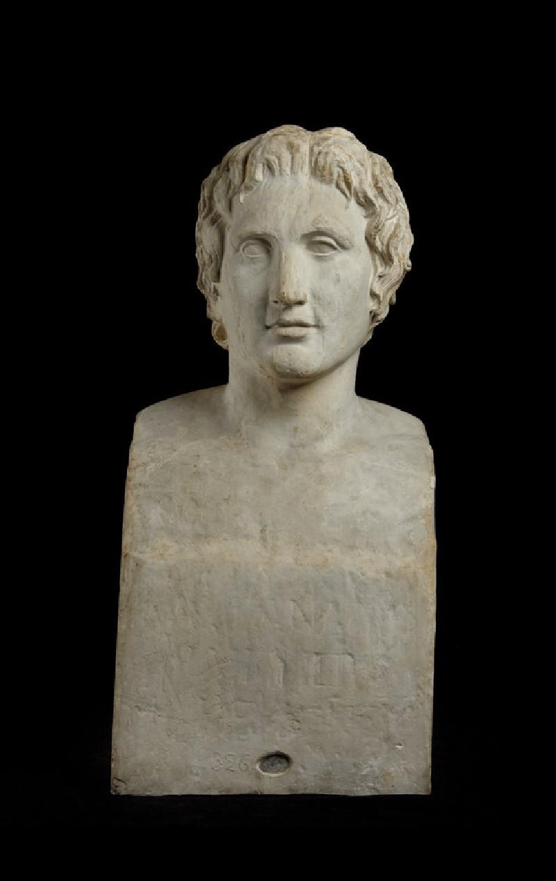 Cast of the Azara Alexander, from near Tivoli