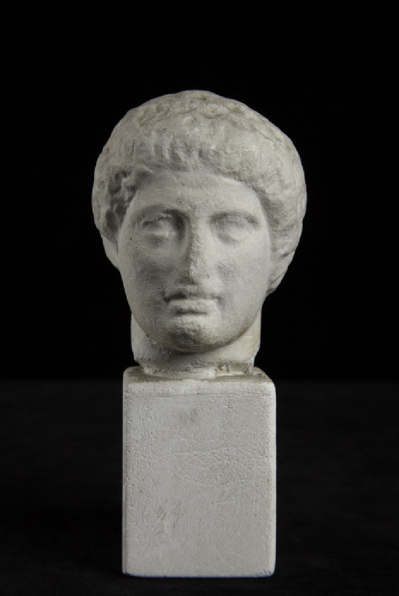 Cast of a male head, probably a Dioskouros, from the base of the statue of Nemesis by Agorakritos, from Rhamnous (CG.D.61)