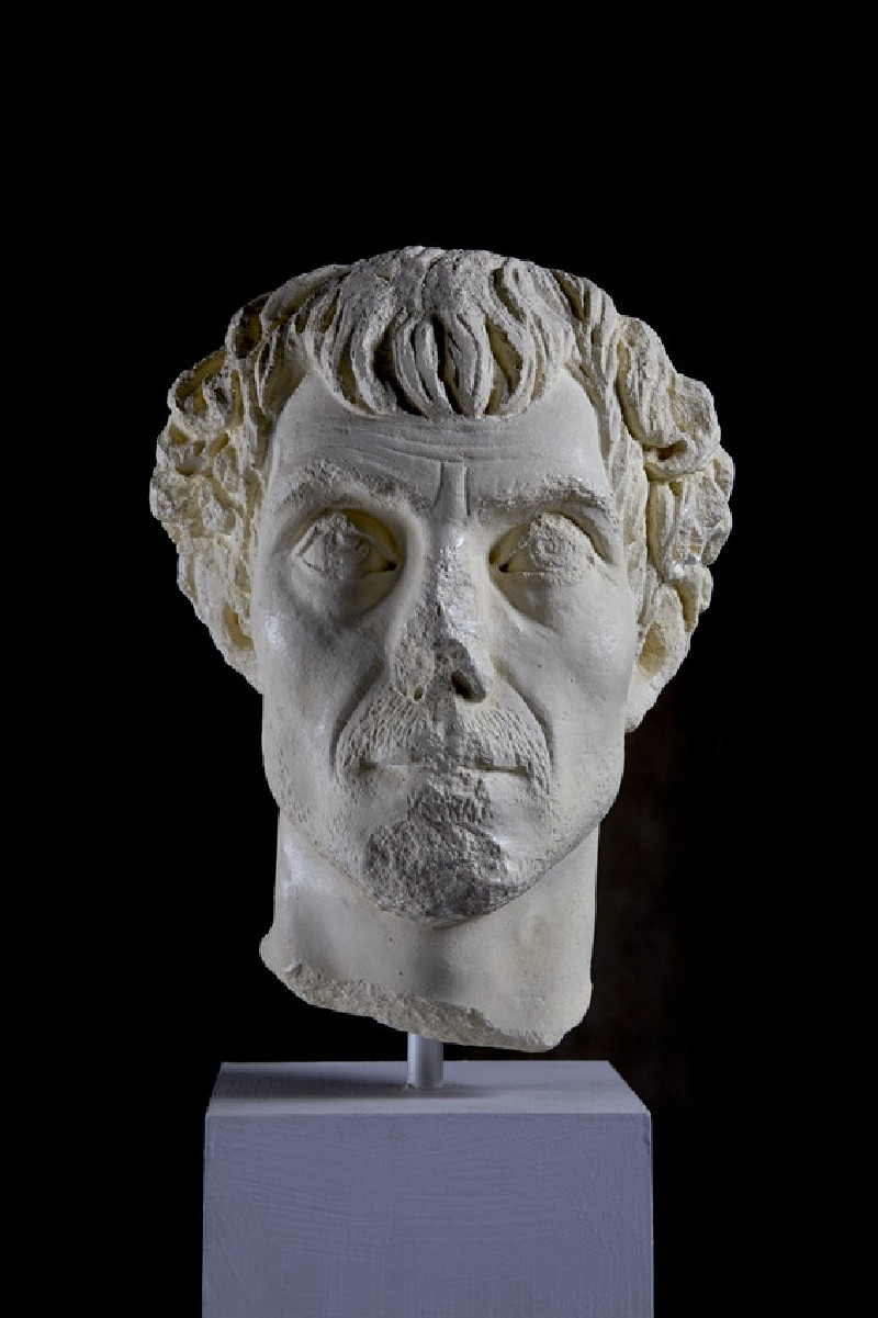 Cast of a male portrait head, from Aphrodisias (CG.H.25)