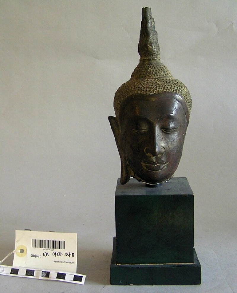 Head of Buddha (EA1958.157.b, record shot)