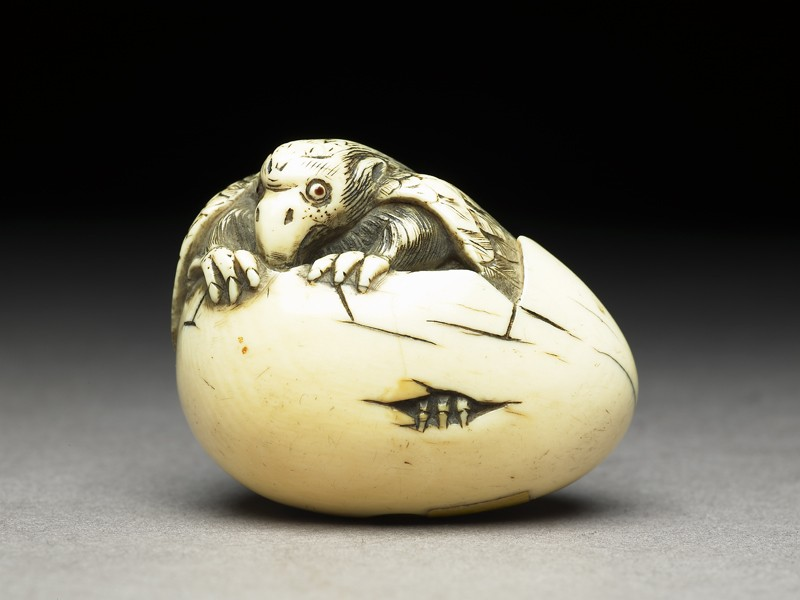 Netsuke in the form of a Karasu tengu emerging from its shell