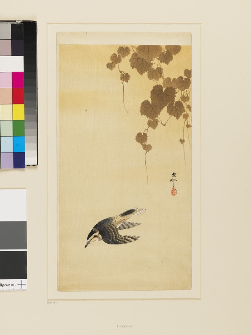 Bird in flight against a yellow sky (EA1958.267, front            )