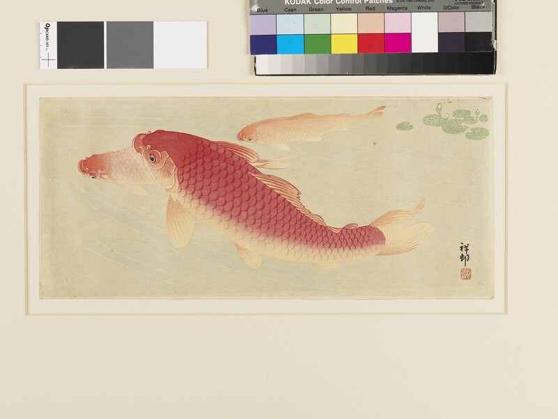 Three Red Carp, water plant above (EA1960.231, front            )