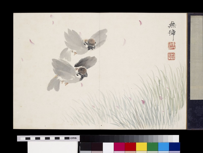 Two sparrows flying over a field (EA1963.48.c)