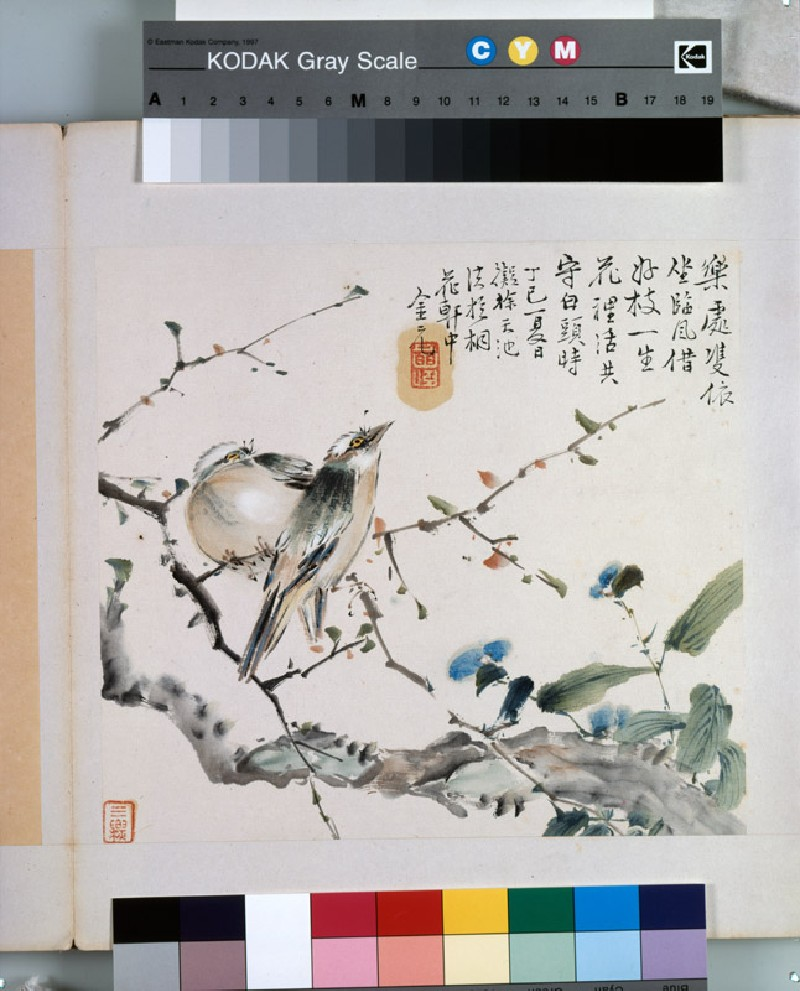 A pair of Chinese Bulbul birds (EA1964.221.d, front              )