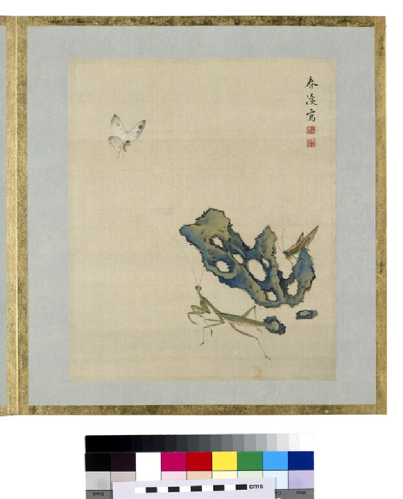 Butterfly, praying mantis, cricket, and rock (EA1964.95.t)