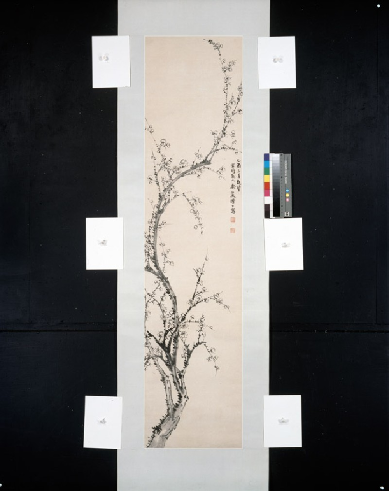 Prunus branch (front, painting only            )