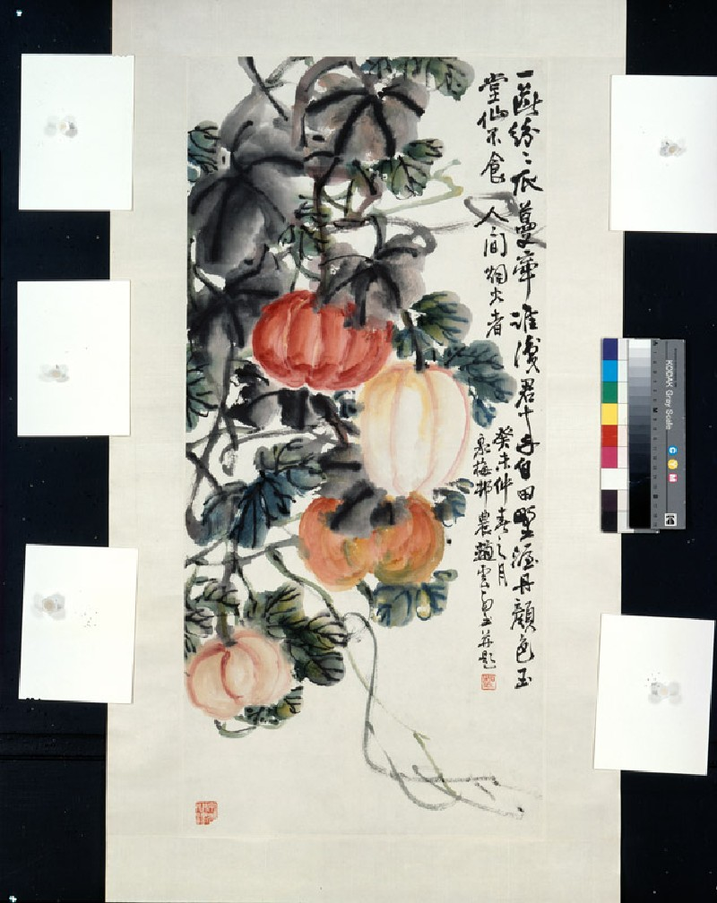 Pumpkin vine (EA1966.164, front, painting only            )