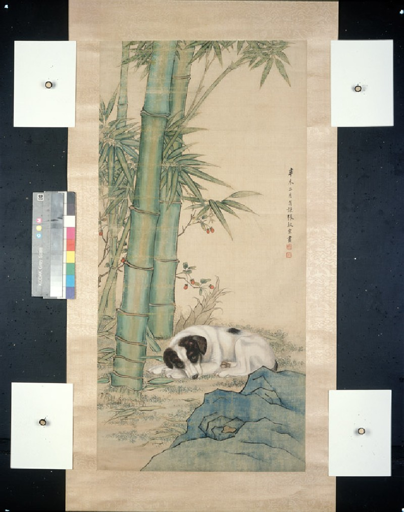 Dog beneath bamboo