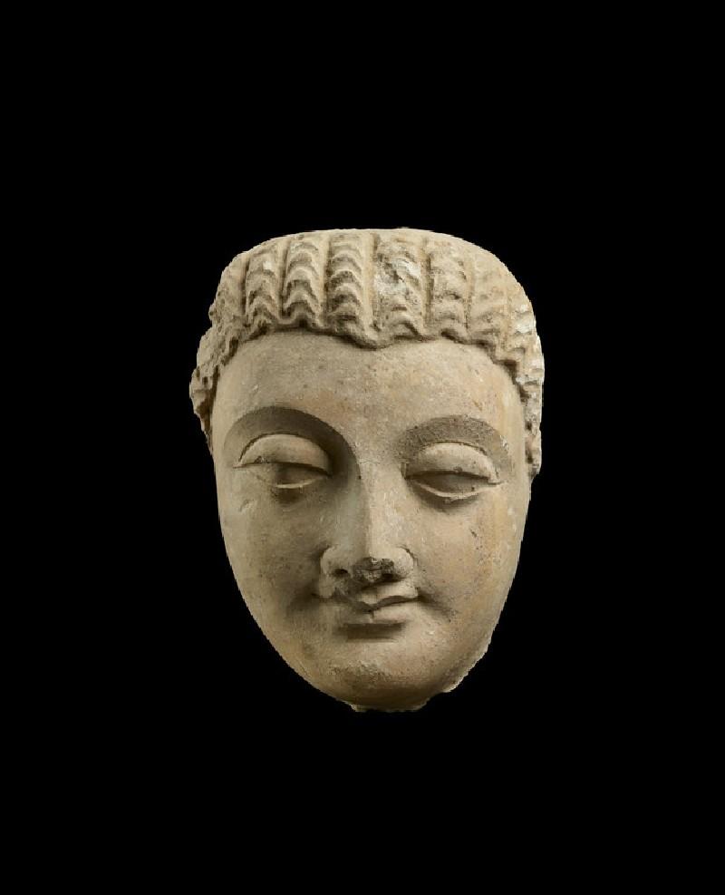 Sculpture of a Head of Buddha