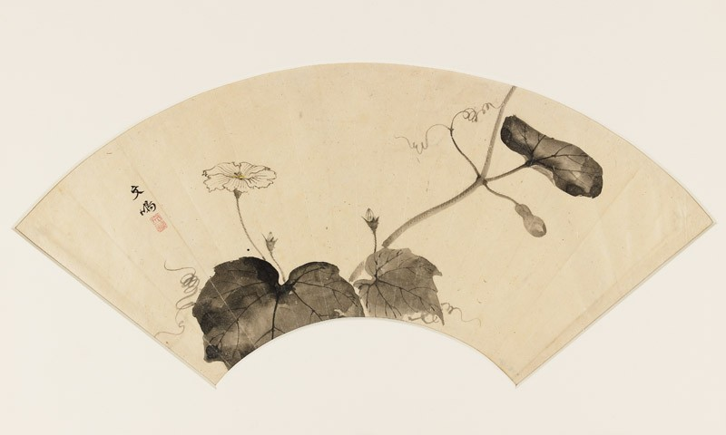 Flowering gourd plant (EA1973.18, front           )