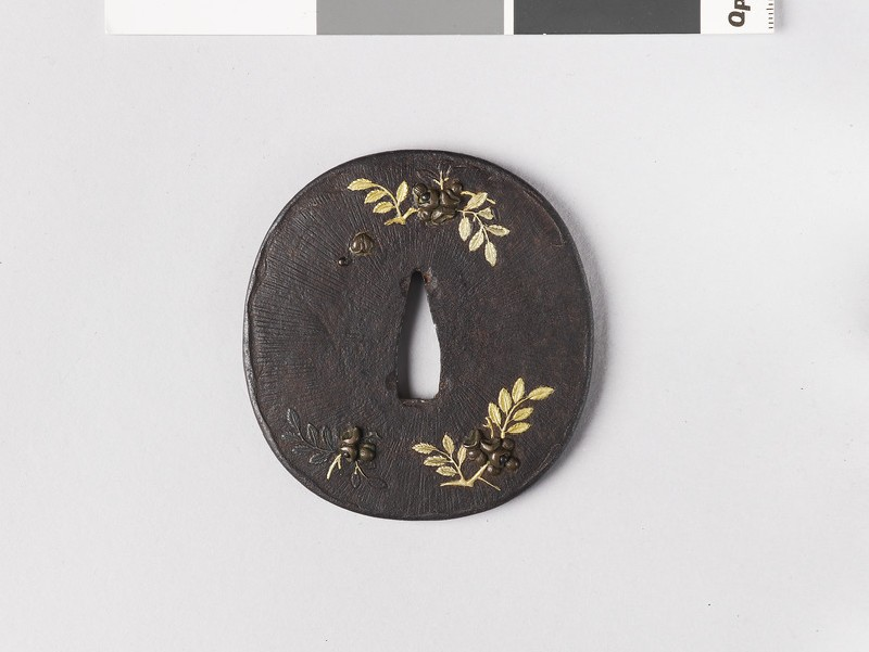 Round tsuba with design of branches and nuts (front            )