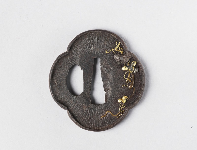 Mokkō-shaped tsuba with design of gourd vines, a frog and amida-yasurime (radial striations) (EA1978.283, front            )