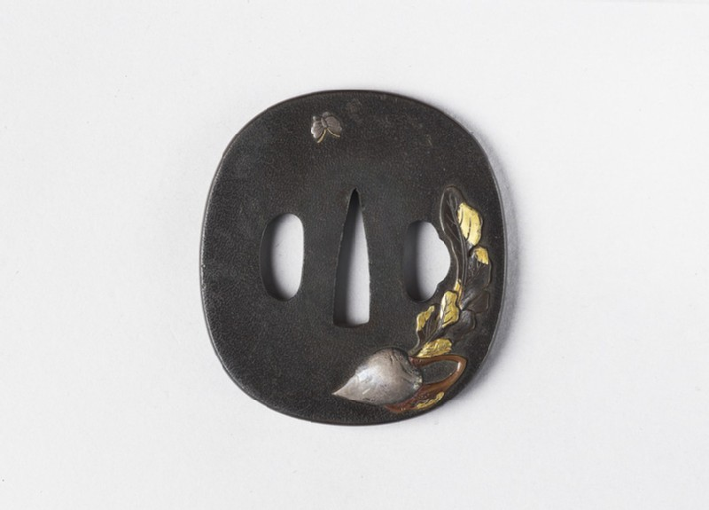 Round tsuba with design of daikon and a butterfly (front            )