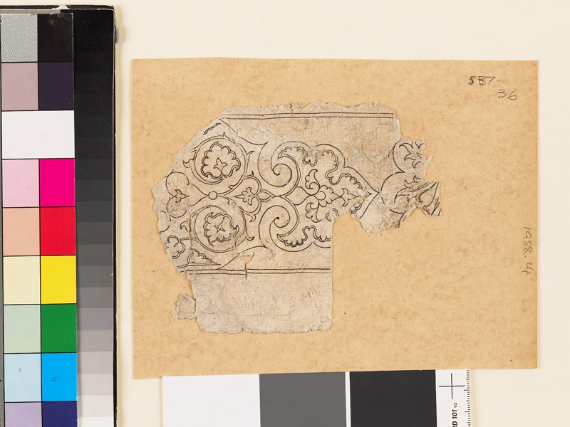 Fragmentary drawing with palmette (EA1988.24, front           )