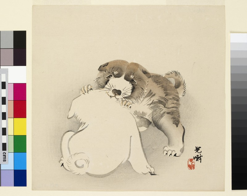 Two puppies at play (EA1989.172)