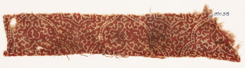 Textile fragment with tendrils (front            )