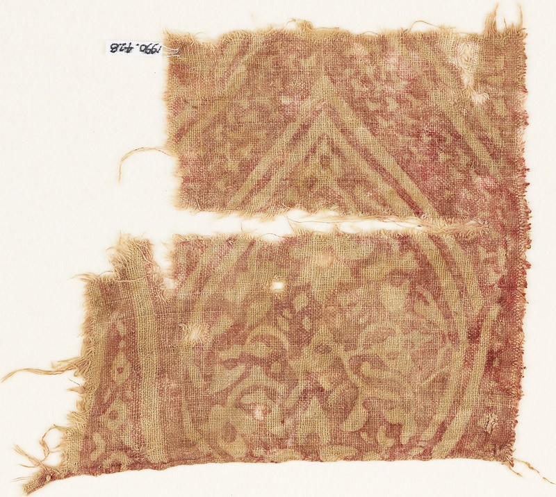 Textile fragment with an oval medallion, tendrils, and leaves (front            )