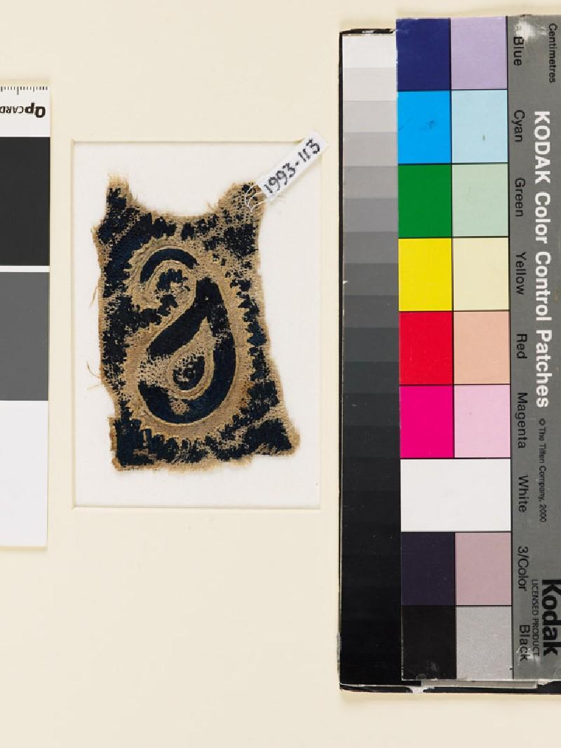 Textile fragment with buta