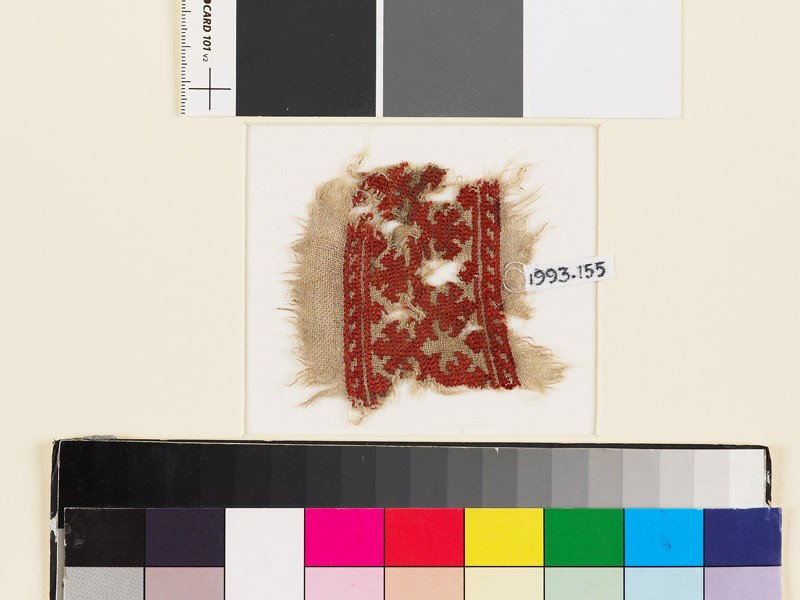 Textile fragment with palmettes, a chevron stem, and leaves (front            )