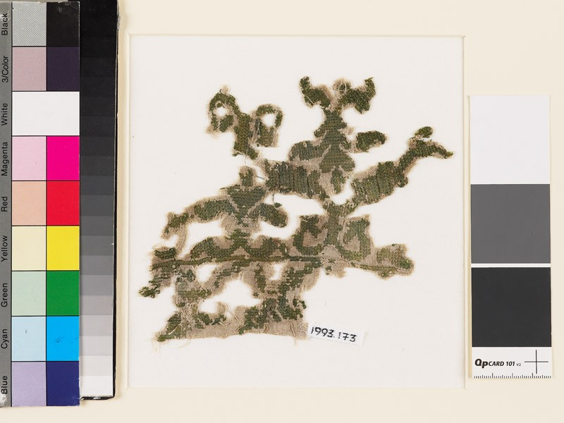 Textile fragment with remains of a stylized plant design (EA1993.173, front            )