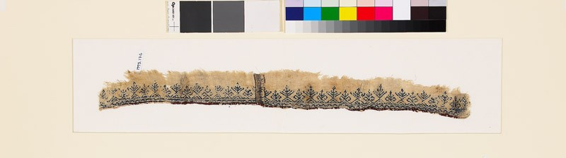 Textile fragment with stylized plants and pseudo-inscription (front            )