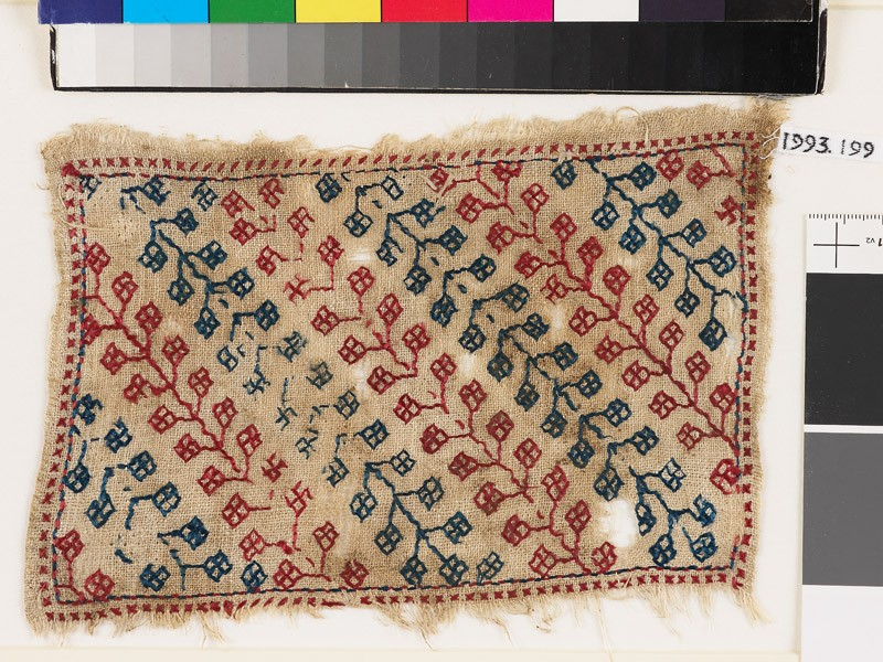 Textile fragment with stems and pairs of stylized leaves (front            )
