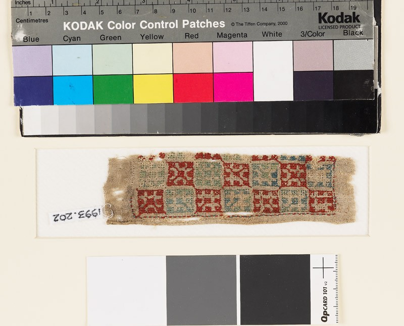 Textile fragment with squares (front            )