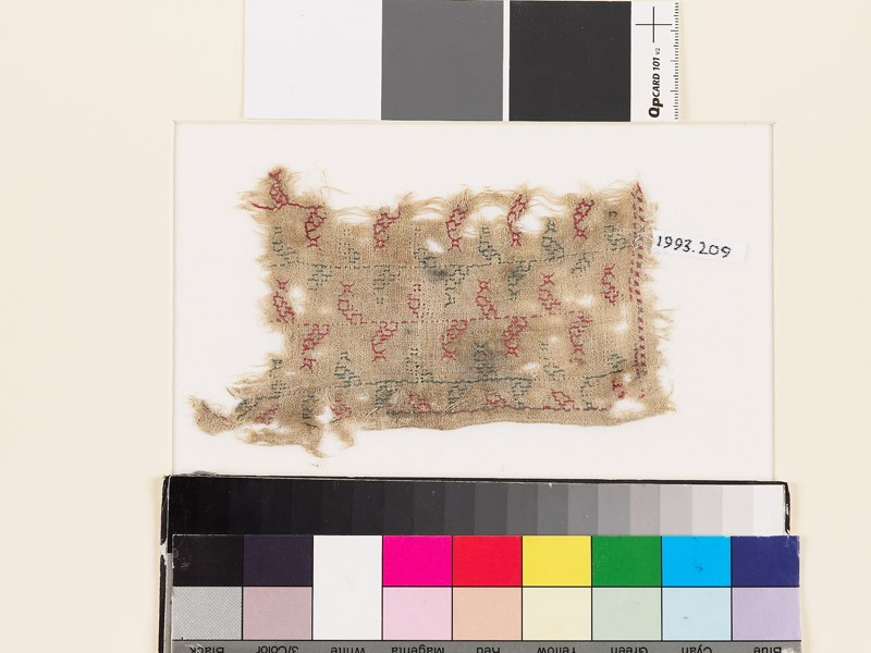 Textile fragment with stems and stylized leaves