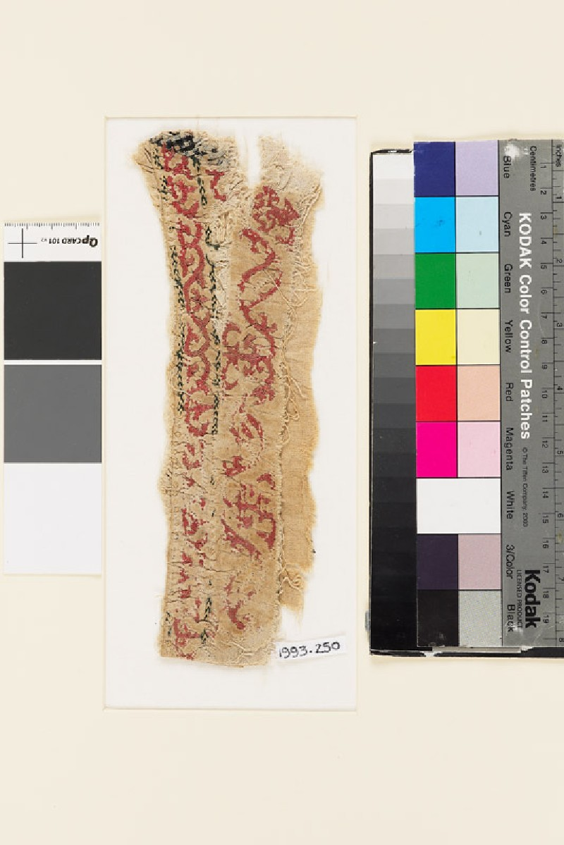 Textile fragment with floral scrolling pattern, probably from the cuff of a sleeve (EA1993.250, front            )